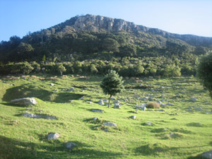 Small_view_of_mount_3
